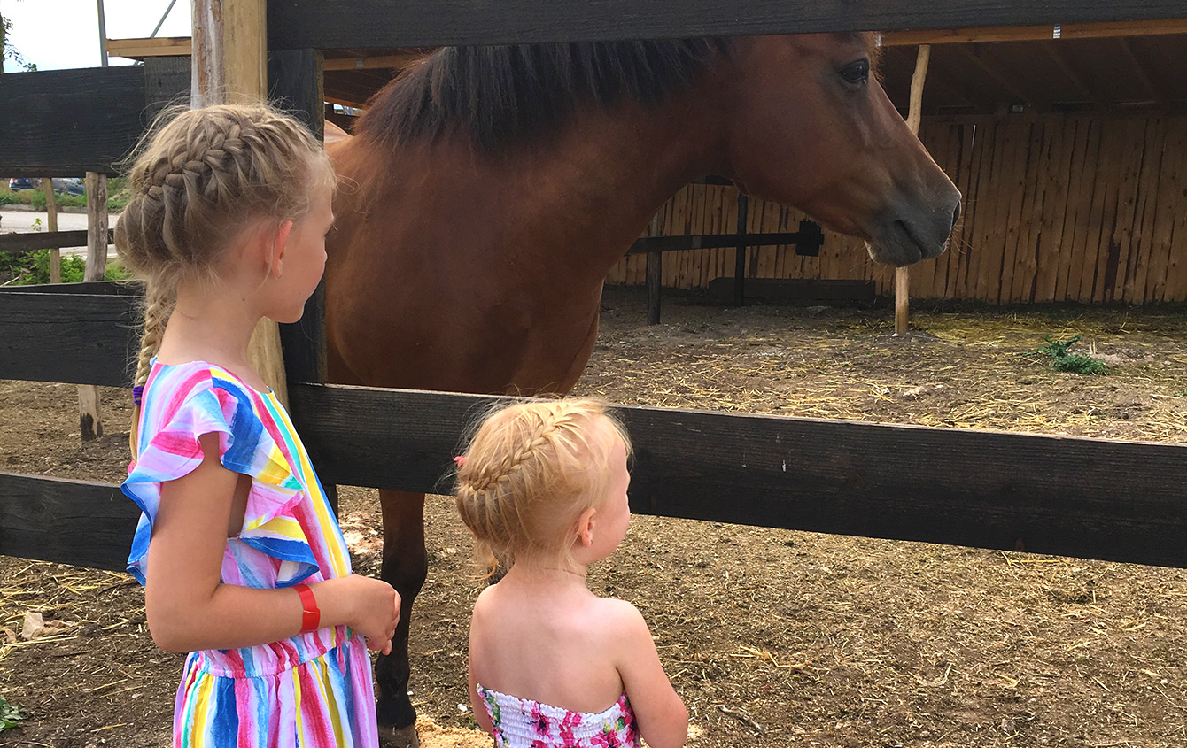 A visit to the horse stables in Kaliakria